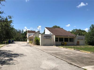 Fort Myers Commercial For Sale: 4595 Palm Beach Blvd