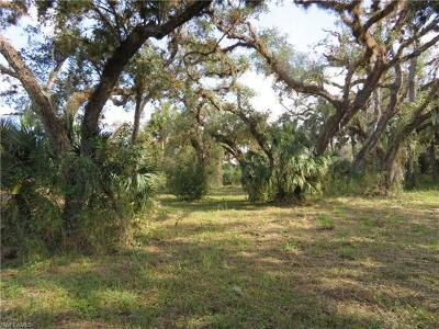 Residential Lots & Land For Sale: 4023 Oak Haven Dr