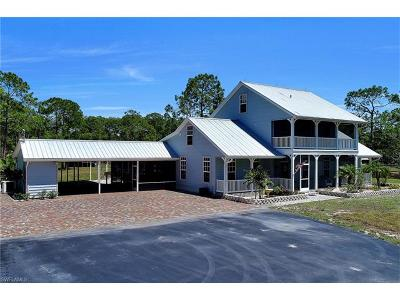 North Fort Myers Single Family Home For Sale: 19150 Gottarde Rd