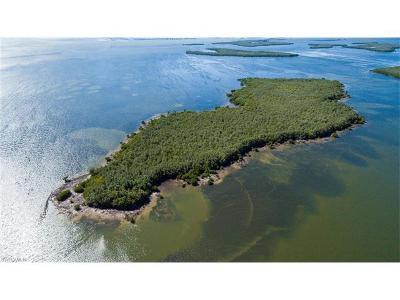 Pine Island Residential Lots & Land For Sale: Little Wood Key