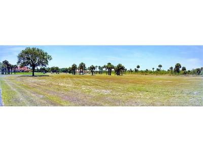 Hendry County Residential Lots & Land For Sale: 2403 River Way