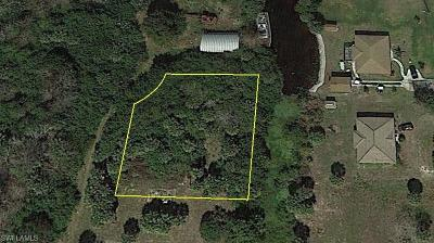 Moore Haven Residential Lots & Land For Sale: 3660 Seminole Ln