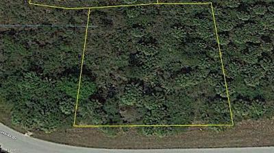 Moore Haven Residential Lots & Land For Sale: 8210 S Side Rd