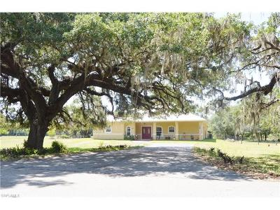 Labelle FL Single Family Home For Sale: $325,000