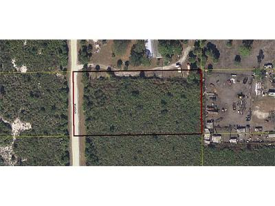 Clewiston Residential Lots & Land For Sale: 45 S Utopia St