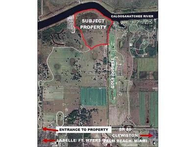 Glades County Residential Lots & Land For Sale: Andreachi Rd