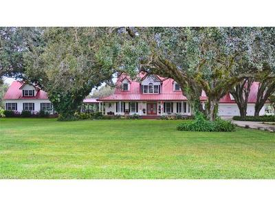 Glades County Single Family Home For Sale: 1444 E Winchester Ave