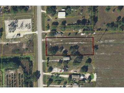 Hendry County Residential Lots & Land For Sale: 4015 State Road 29 S