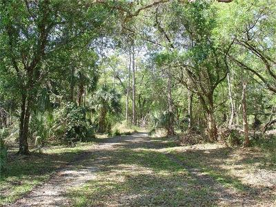 Glades County Residential Lots & Land For Sale: 975 Silver Lake Rd