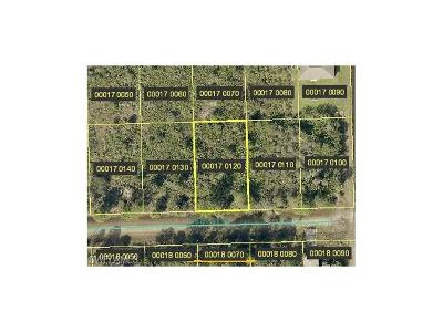 Lehigh Acres FL Residential Lots & Land For Sale: $4,999