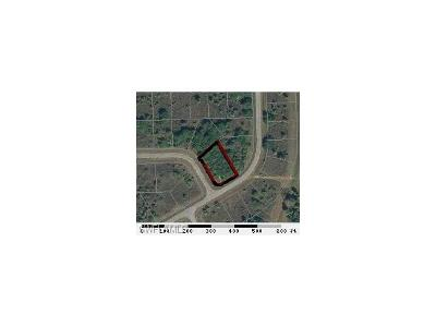 Hendry County Residential Lots & Land For Sale: 201 Elmwood St