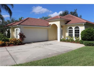 Estero Single Family Home For Sale: 20051 Eagle Glen Way