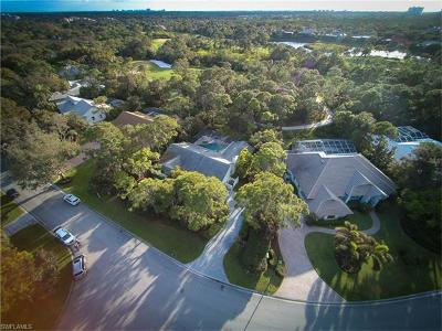 Bonita Springs Single Family Home For Sale: 3959 Woodlake Dr