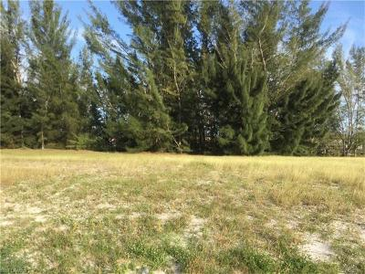 Cape Coral FL Residential Lots & Land For Sale: $9,900