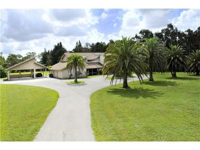 Fort Myers Single Family Home For Sale: 15331 Briar Ridge Cir