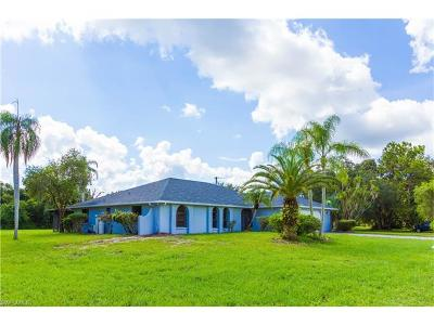 Alva Single Family Home For Sale: 2871 Styles Rd