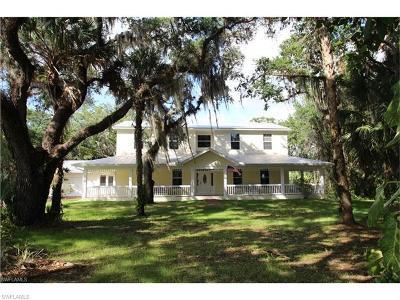 Alva FL Single Family Home For Sale: $465,495