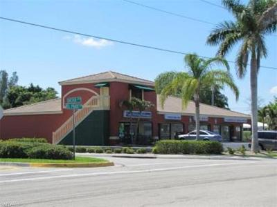 Cape Coral Commercial For Sale: 4307 Del Prado Blvd S