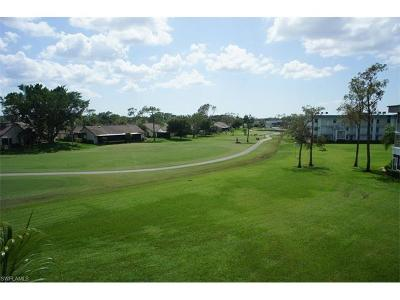 Fort Myers Condo/Townhouse For Sale: 1724 Pine Valley Dr #313