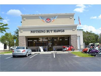 Fort Myers Commercial For Sale: 5791 Country Lakes Dr