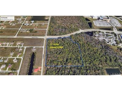 Cape Coral Commercial Lots & Land For Sale: 1209 Diplomat Pky E