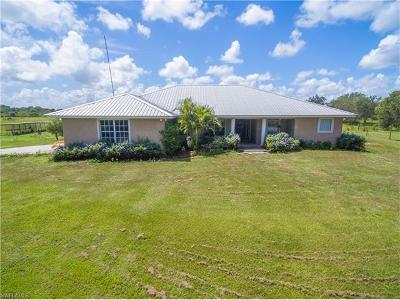 Glades County Single Family Home For Sale: 2987 Wayman Rd