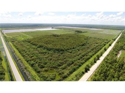 Estero Residential Lots & Land For Sale: 18500 Corkscrew Rd