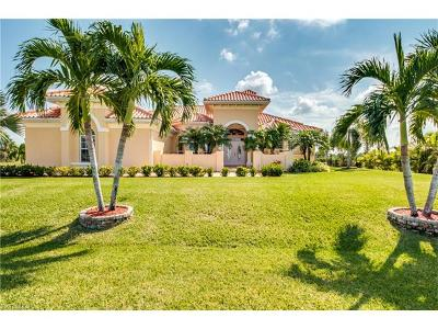 Cape Coral Single Family Home For Sale: 2115 Old Burnt Store Rd N