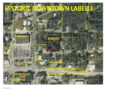 Commercial Lots & Land For Sale: N Lee St
