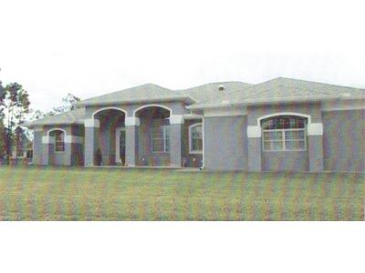 Lehigh Acres Single Family Home For Sale: 650 Ontario Ct