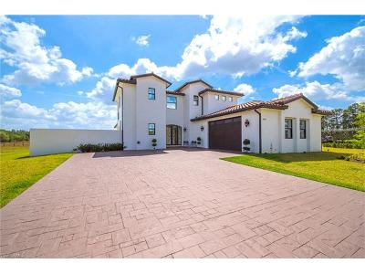 Alva Single Family Home For Sale: 2071 Rialto Way