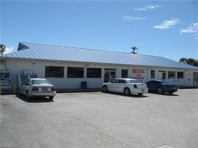 Moore Haven Commercial For Sale: 14296 E State Road 78