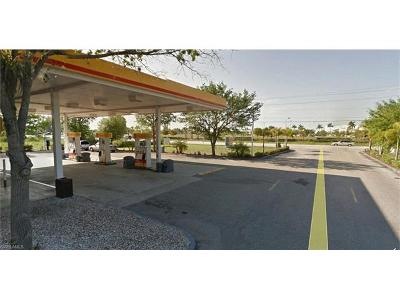 Cape Coral Commercial For Sale: 3130/3138 SW Pine Island Rd