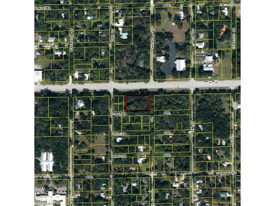 Commercial Lots & Land For Sale: O E Hickpochee Ave