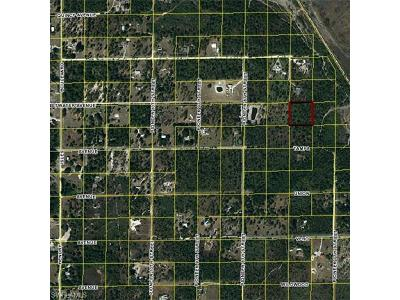 Hendry County Residential Lots & Land For Sale: Pioneer