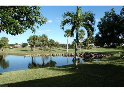 North Fort Myers Single Family Home For Sale: 1751 Palo Duro Blvd