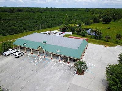 Commercial For Sale: 6190 W State Road 80