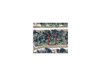 Hendry County Residential Lots & Land For Sale: 5017 NE Tradewinds Cir