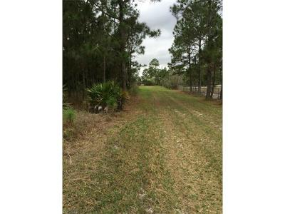 Clewiston Residential Lots & Land For Sale: 42022 Everhigh Acres Rd