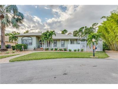 Fort Myers Single Family Home For Sale: 8607 S Lake Cir