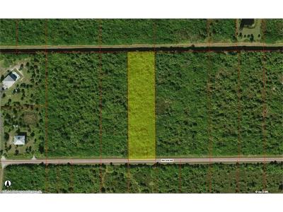 Collier County Residential Lots & Land For Sale: 765 39th Ave NW