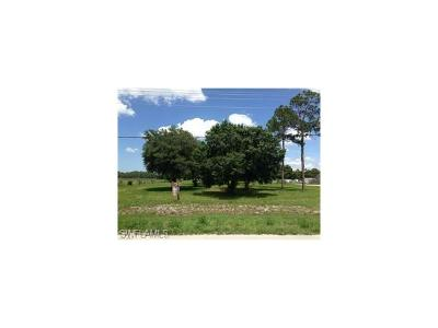 Commercial Lots & Land For Sale: 3019 State Road 29 S