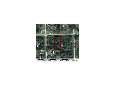 Clewiston Residential Lots & Land For Sale: 154 Horse Club Ave