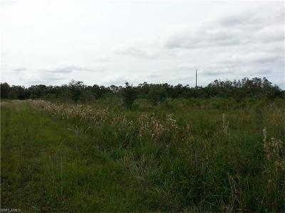 Glades County Residential Lots & Land For Sale: 9640 U S Hwy N 27