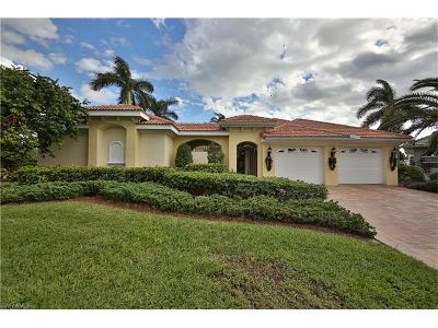 Single Family Home For Sale: 9873 Las Playas Ct