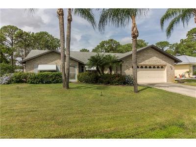 Port Charlotte Single Family Home For Sale: 5385 Winfree St