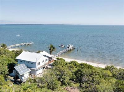 Captiva, Sanibel Single Family Home For Sale: 11340 Pejuan Shores Cayo Costa Island