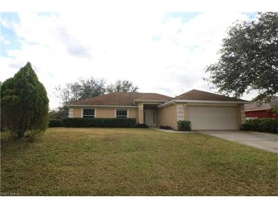 Buckingham Single Family Home For Sale: 6250 Castlewood Cir
