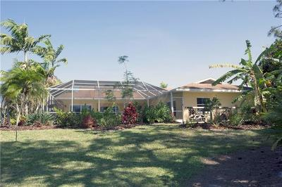 Bonita Springs Single Family Home For Sale: 9855 Treasure Cay Ln