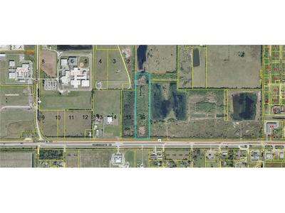 Glades County Residential Lots & Land For Sale: 1630 U S Hwy 27